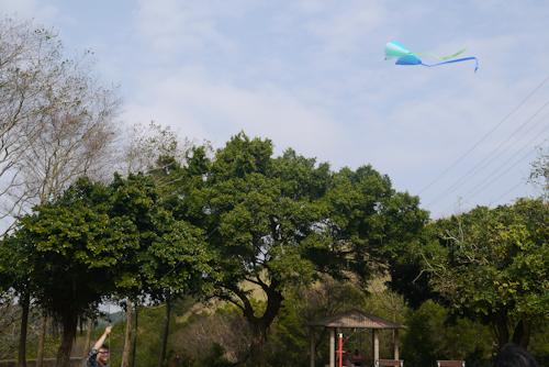 口袋風箏 (12)