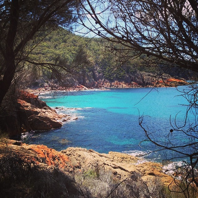 Beautiful Freycinet #tasmania #instatassie #latergram #sleepybay
