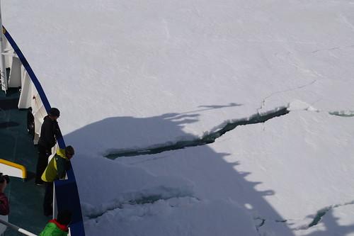 702 Weddell Sea
