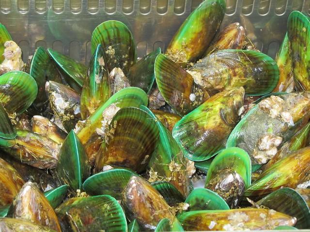 Mejillones verdes neozelandeses