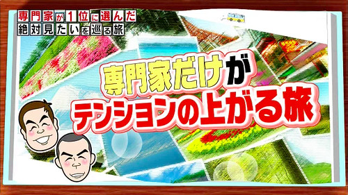 2月6日(金) MRT宮崎放送「専門家だけがテンションの上がる旅」放映決定!