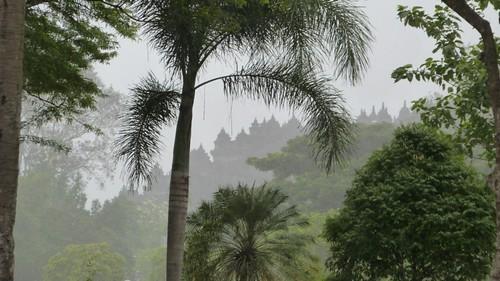 Yogyakarta-2-098