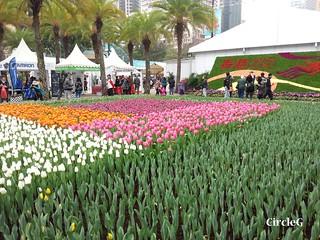 CIRCLEG 遊記 維多利亞公園 銅鑼灣 花展 2016 (45)