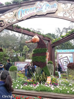 CIRCLEG 遊記 維多利亞公園 銅鑼灣 花展 2016 (12)