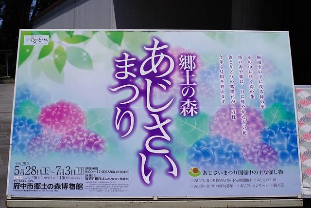 2016/06/18_郷土の森-0