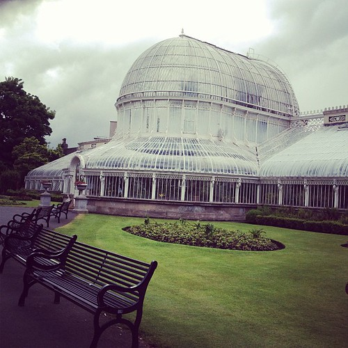 I have arrived in Belfast and proceeded straight to the botanic gardens.