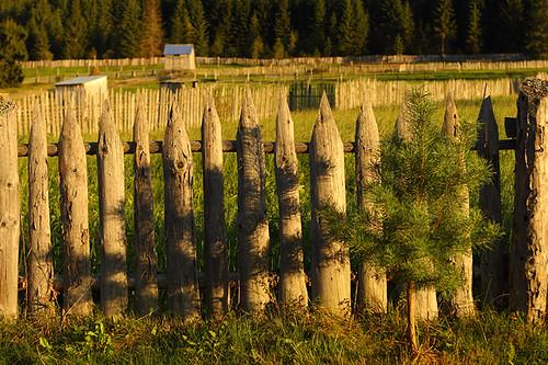 light shadow canon romania canonef2470mmf28lusm moldova bucovina suceava canoneos50d carlibaba canon50d