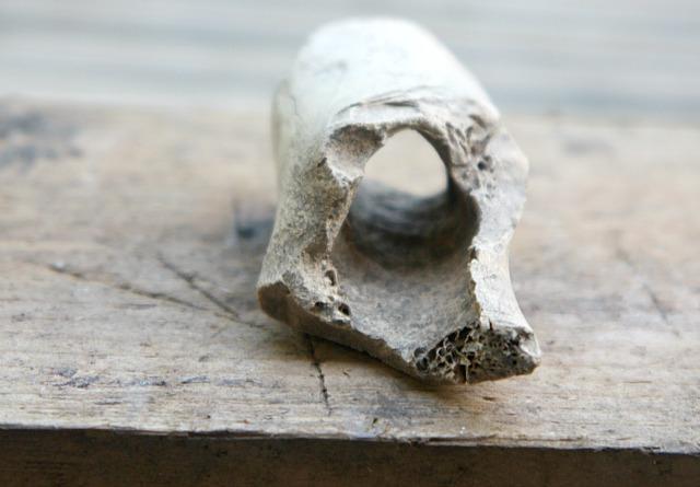 Knochen3