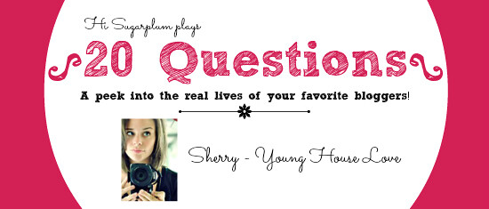 20 questions Sherry