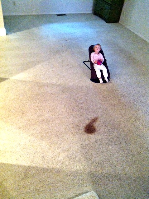 nora spilled in the living room