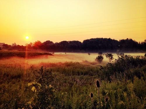 light orange sun field fog sunrise run rise