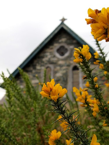 Flowers of church
