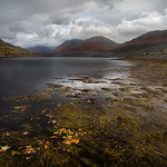 Highlands_MG_0507