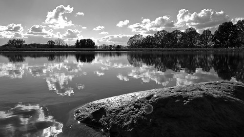 trees ohio sky bw white lake black reflection nature water monochrome rock clouds landscape arboretum newark across dawes monovember