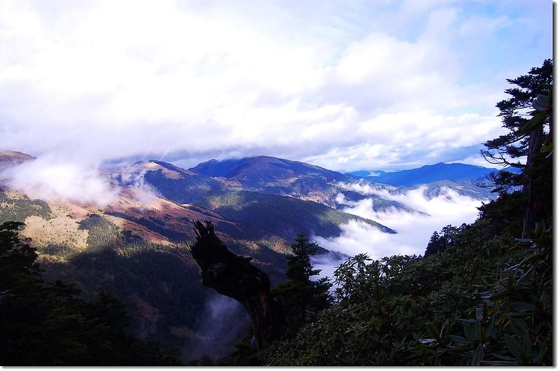 合歡群峰(From 奇萊山登山步道) 6