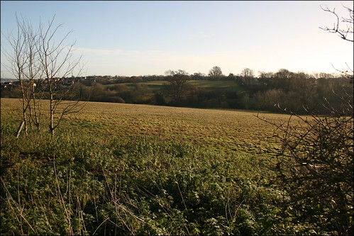 The Stour valley near Manningtree