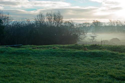 uk morning england mist fog day meadow somerset brook bridgwater themeads durleighbrook