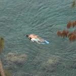Snorkeling in Maui