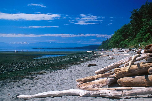Beach On Juan de Fuca Strait at Witty's Lagoon Park, Metchosin, Victoria, Vancouver Island, British Columbia