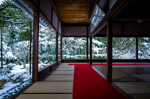 alone in the snow (Housen-in temple, Kyoto)