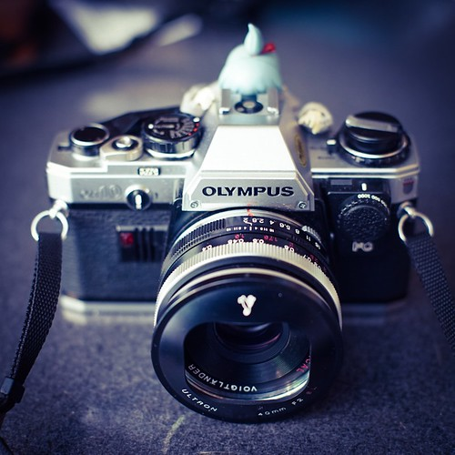 カメラロール-5980