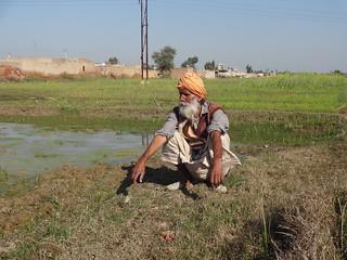 Farmer Chuber Singh on his waterlogged land