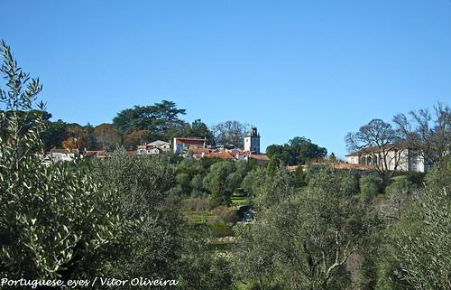 Quinta dos Condes de Anadia - Mangualde - Portugal
