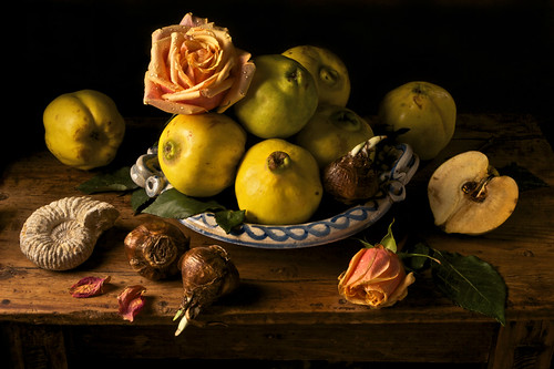 Paulette Tavormina, Quince, after G.G. (from the series Natura Morta), 2009