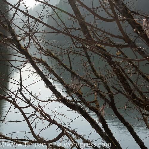 Doubs (1) Biaufond 2014 03 12_3475