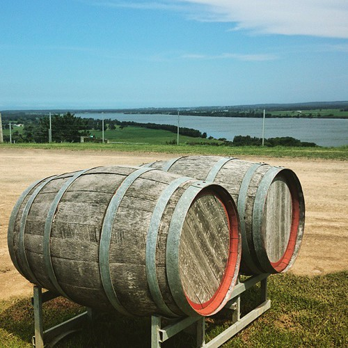 Latergram from yesterday's wine tour. Shoalhaven River, from Two Figs Winery.