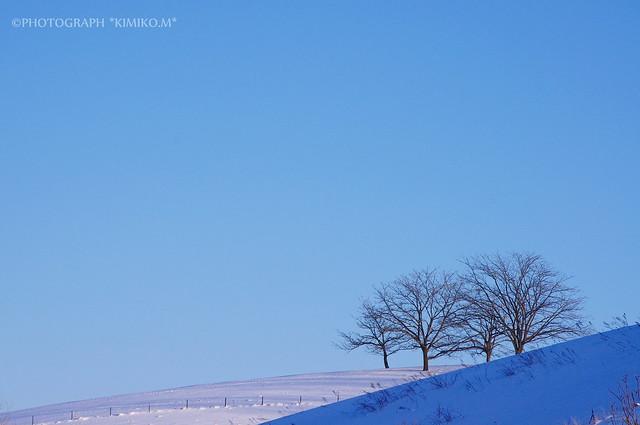 WinterBlue4
