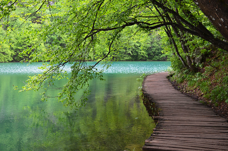 Wooden walkway, Plitvice Lakes, Croatia
