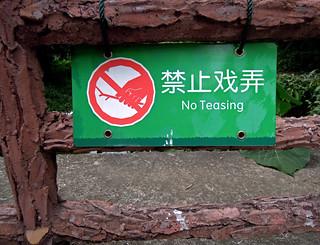 No Teasing