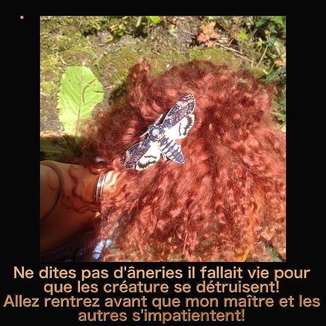 Y a pas que les mortemiamor dans la vie y a les bonsenfants  - Page 3 26791061085_479ed59683_z