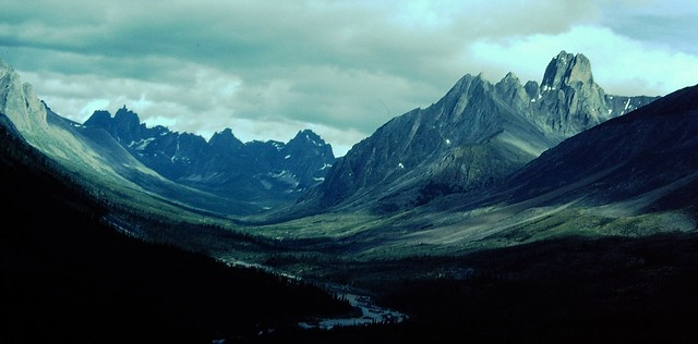 Tombstone Mts, north of Dawson City, Yukon , Canada