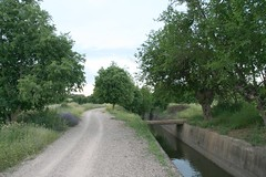 Camino del canal