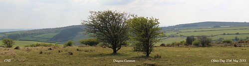 Draynes Common by Stocker Images