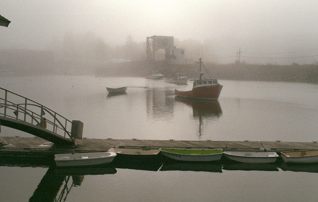 Misty day, Manchester-by-the-sea