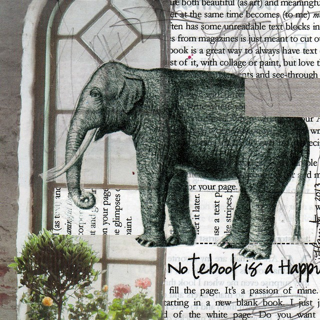 Collage: An Elephant in the Window