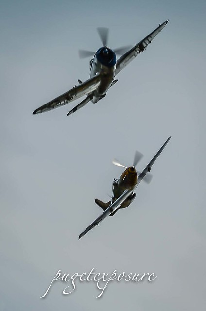 "HFC's P-47 Thunderbolt ""Tallahassee Lassie"" & HFC's P-51D Mustang ""Upupa Epops"""