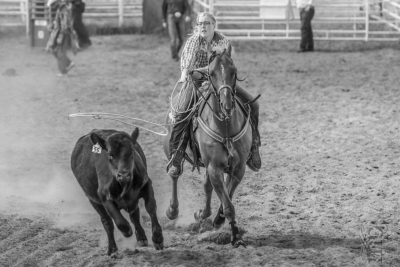 Gooseberry Lake : 4-H Rodeo 2013 : Des : Lasso You