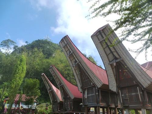 Sulawesi13-Rantepoao (6)