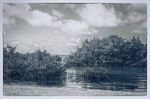 Image of Spanish Cay with Topaz ReStyle treatment