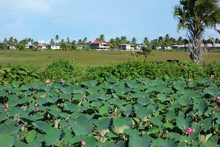 Fotografia de New Amsterdam, Guiana