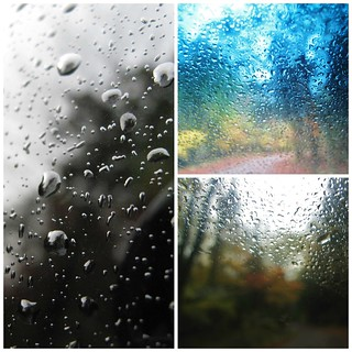 windshield collage ~ HMM!