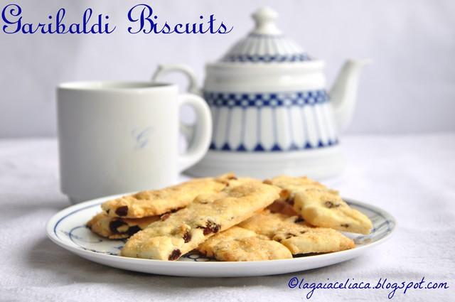 Garibaldi bisquits