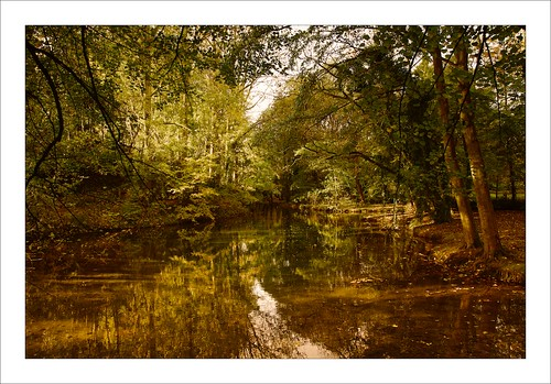 Autumn Reflections  / Reflets d'automne [On Explore # 3, 20 November, 2013]