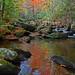Jones Gap State Park - Middle Saluda River