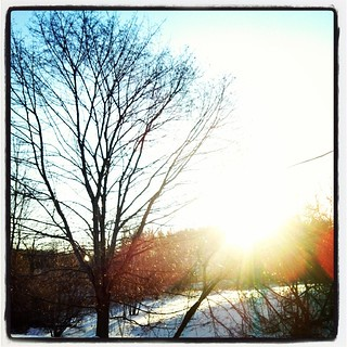 Holy crap, its still freezing outside #brrrr #sunrise #morning #winter #snow #tree #sun