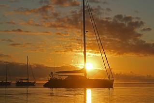 Tonga Offshore-56